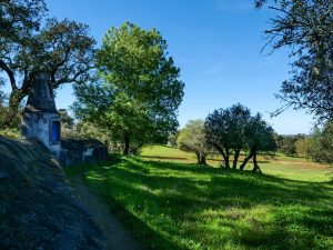 Portugal Cultural Experience - Evora Silver Water Hike